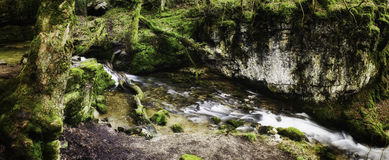 Panoramic background view of a scenic stream. Flowing through lush green woodland Royalty Free Stock Photos