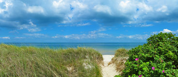 Panoramic baltic sea beach landscape Royalty Free Stock Photography