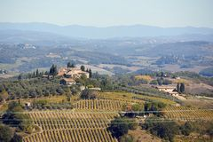 Panoramic banner landscape with vineyards and houses on Italy, Europe. Beautiful panoramic banner landscape with vineyards and houses on Italy, Europe royalty free stock photo