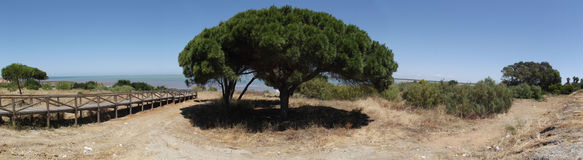 Panoramic of Beach Vista, Sanlucar de Barrameda Stock Photo