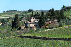 Panoramic beautiful view of residential areas Radda in Chianti and vineyards and olive trees in the Chianti region, Tuscany, Italy royalty free stock photo