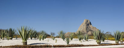 Panoramic of Bernal. Bernal in Queretaro, is one of largest monolith in the world stock photos
