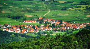 Panoramic bird fly view to Alsace Stock Photography