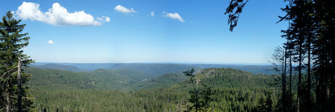 Panoramic of the Black Forest Royalty Free Stock Image