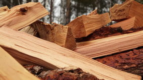 Panoramic Close-up Firewood. Pile of wood, Camera movement along the slider stock video