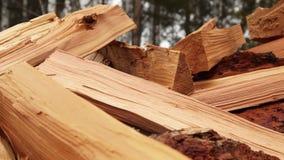 Panoramic Close-up Firewood stock video