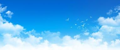 Panoramic cloudscape Stock Photos