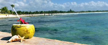 Panoramic coconut Royalty Free Stock Images