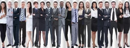 Panoramic collage of groups of successful employees. royalty free stock image