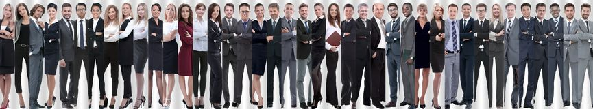 Panoramic collage of a large and successful business team royalty free stock image