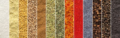 Panoramic collage of spices and herbs isolated background. seasoning texture for food packaging design. collection of colorful stock photo