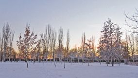Urban Park with Snow at Dusk stock photos