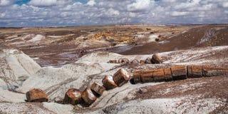 Petrified Logs Royalty Free Stock Photography