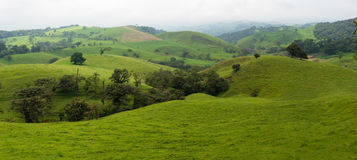 Panoramic of the Costa Rica Countryside Royalty Free Stock Photos