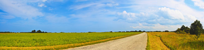 Panoramic countryside wide road view with trees behind. Rural summer landscape. Typical european pastoral meadow, pasture, field. Royalty Free Stock Images