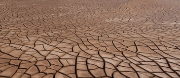Panoramic Cracked Soil Drought Royalty Free Stock Images