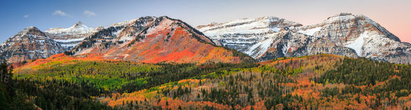 Panoramic Dawn fall glow in the Wasatch Mountains. Stock Photography