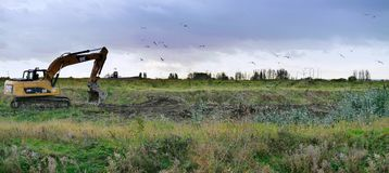 Panoramic of excavator with birds above Royalty Free Stock Photo
