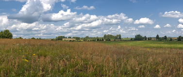 Panoramic farm wild landscape Stock Image