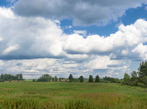 Panoramic farm wild landscape Royalty Free Stock Photos