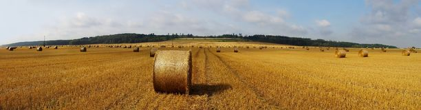 Panoramic field and hay bales. A panoramic view of a country hayfield and large round bales of hay Royalty Free Stock Photo