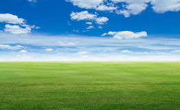 Panoramic field landscape. Summer background Royalty Free Stock Image