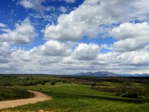 Panoramic of the field and the mount lions royalty free stock photo
