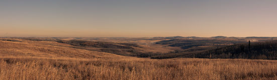 Panoramic Foothills Landscape. A panoramic landscape of foothills in the prairies, Ann & Sandy Cross Conservation, Alberta, Canada Royalty Free Stock Photos