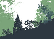 Panoramic forest landscape with silhouettes of trees and plants Stock Image