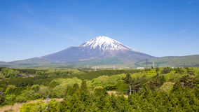 Panoramic of fuji mountain Stock Image