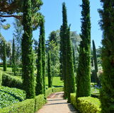 Panoramic garden and park view summer vacation concept. Panoramic garden and park view Santa Clotilde Gardens Stock Images