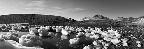 Panoramic glacier in Trygghamna, Svalbard Royalty Free Stock Photo