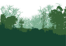 Panoramic green forest landscape with silhouettes of trees Royalty Free Stock Image