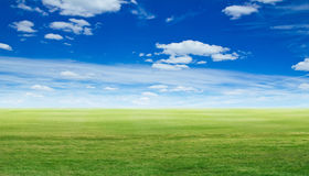 Panoramic green landscape. Summer background Royalty Free Stock Photos