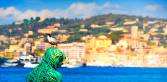 Panoramic image of a black headed seagull and the mermaid Atlante. A panoramic shot showing a black-headed gull is relaxing on Atlante`s head, the statue of a Stock Image