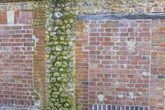 Panoramic image of a Decorative old and red brick and flint wall with green and yellow vegetable moss stock photo