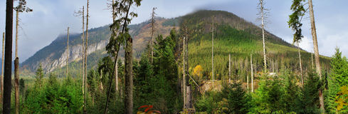 Panoramic image. mountain scenery Stock Images