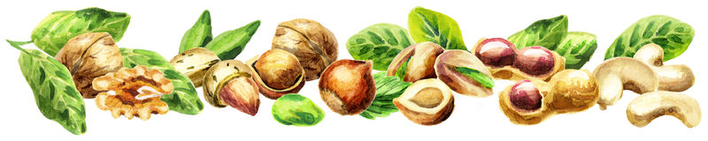 Panoramic image of nuts Stock Photo