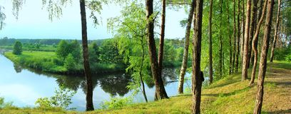 river in a forest glade. Stock Photo