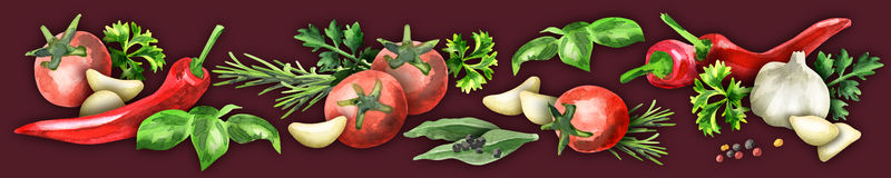 Panoramic image of spices and herbs. Watercolor Vector Illustration