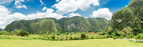 Panoramic image of the Vinales Valley in Cuba Stock Image