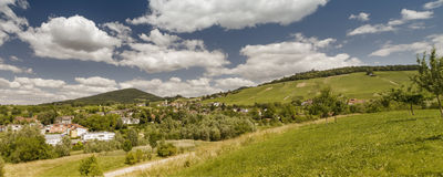 Panoramic image of a vineyard in Baden-Baden Royalty Free Stock Photography