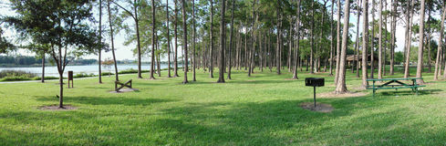 Panoramic Lakeside. Panoramic of a park and trees by the lakeside in Florida stock photography