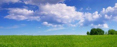 Panoramic Landscape Royalty Free Stock Photo