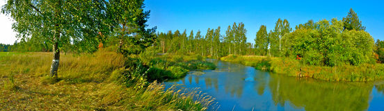 Panoramic landscape with birch tree and river Stock Images