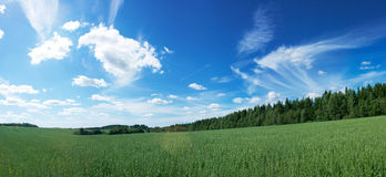 Panoramic Landscape with Green Field and Blue Sky Royalty Free Stock Image