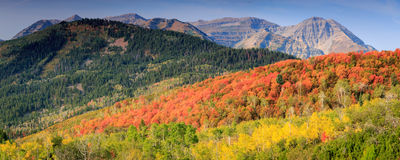 Free Panoramic Landscape In The Utah Mountains. Royalty Free Stock Photo - 59524755