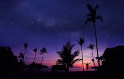 Panoramic landscape of man standing on the coconut beach with a million stars. And sunrise early morning stock image