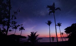 Panoramic landscape of man standing on the coconut beach with a million stars. And sunrise early morning stock photos