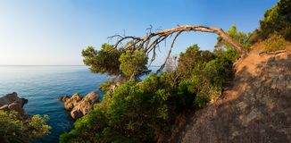 Panoramic landscape of mediterranean nature in Spain. Sea coast in Costa Brava stock image